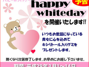 2017whiteday