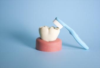 高松でインプラント治療を行う【サンシャイン歯科】は、インプラント=第3の歯と考えています