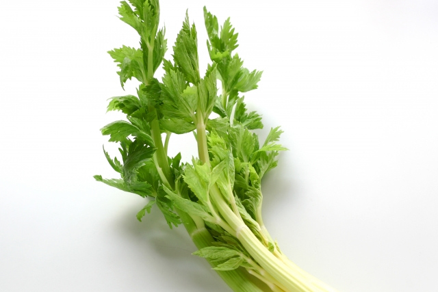 ◇セロリ・ブロッコリーなどの野菜